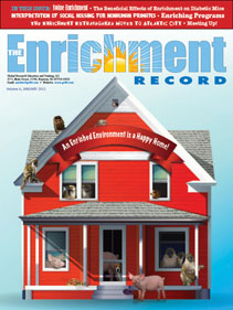 The Enrichment Record Issue 6