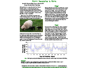 Stress Inoculation in Sheep