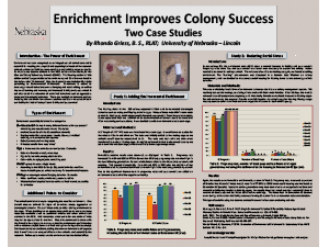 Environmental Enrichment Improves Colony Success